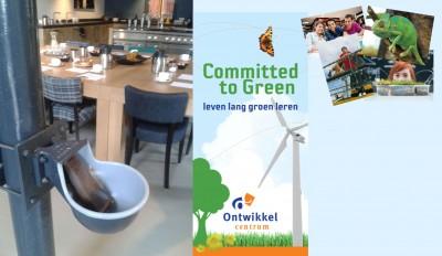 3 Horizons of green entrepreneurship